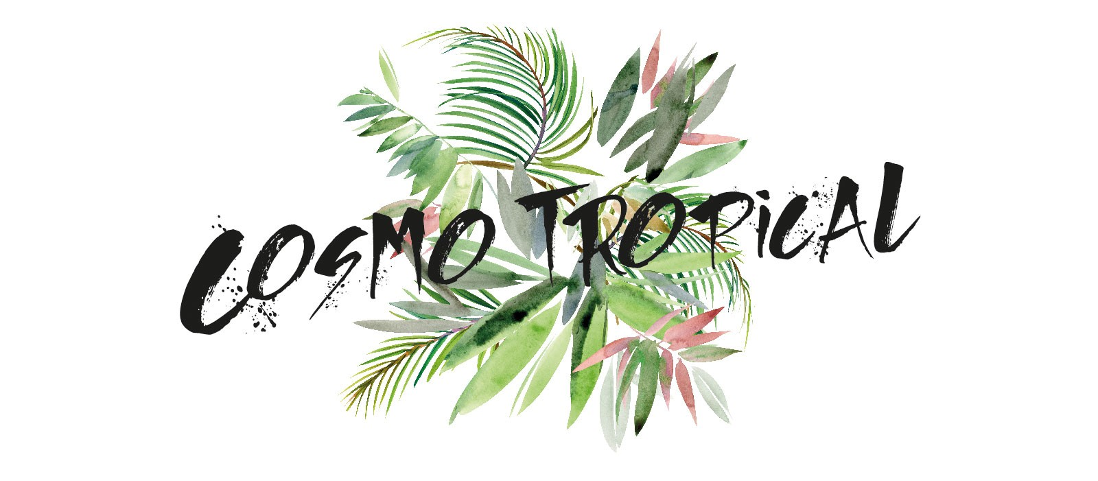 03_Cosmo-Tropical